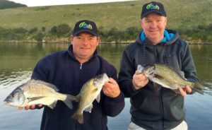 SW Victorian mixed catch of Bream and Estuary Perch