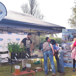 OzFish demonstrations a hit at Riverfest