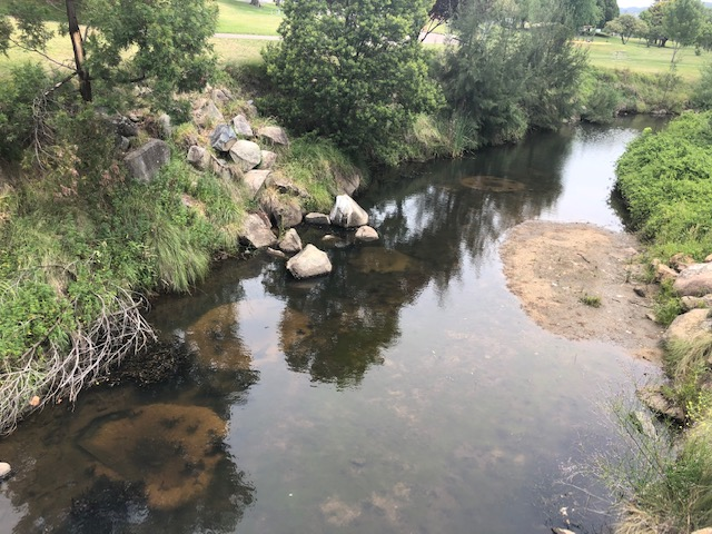 Big hopes for Tenterfield Creek as restoration work commences