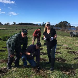 Tree planting restores fish habitat along Nicholson River