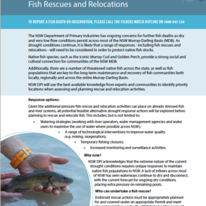 NSW Native Fish Drought Response: Fish Rescues and Relocations Fact Sheet