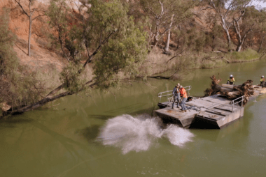 More snags in the Murray River means more fish