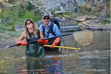 Search for the Kangaroo River Perch